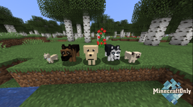 More Dogs [1.14.4]