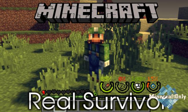 RealSurvivor [1.12.2]
